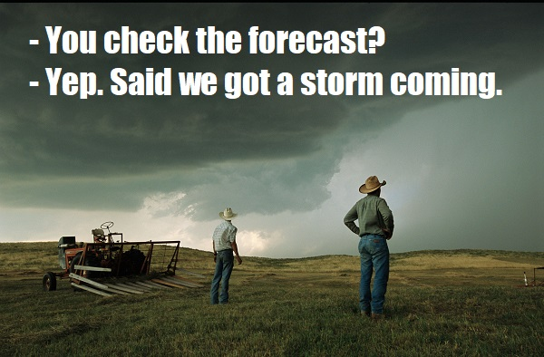 A thunderstorm halts haying as two farmers watch the sky, 2003.