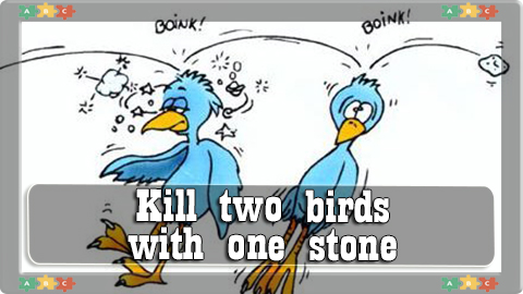 1 Kill two birds