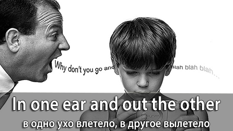 10In_One_Ear