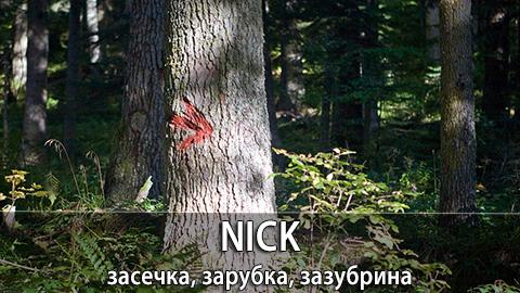 11Nick