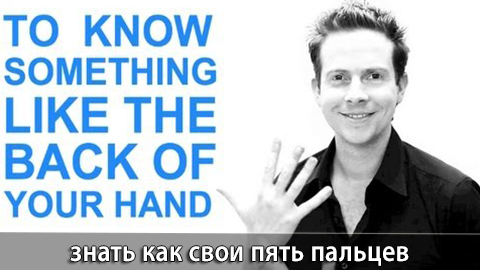 14Back_Of_a_Hand