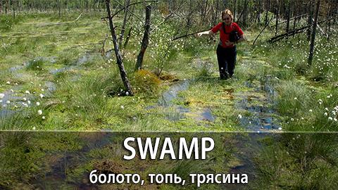 14Swamp