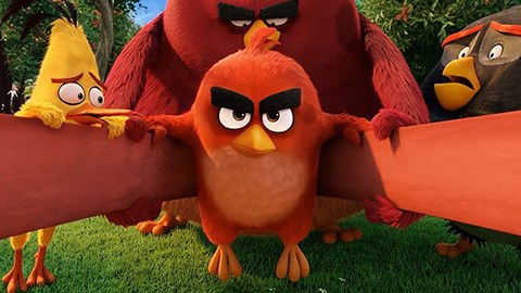 3Angry_Birds