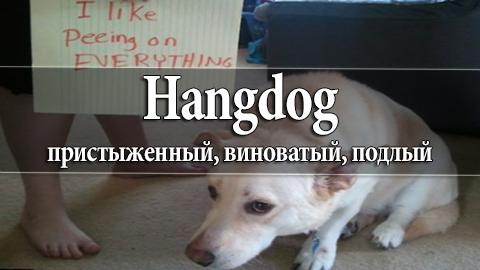 3Hangdog