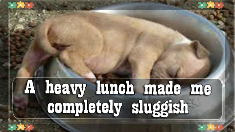 5 A heavy lunch made me completely SLUGGISH