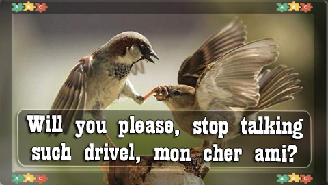 5 WILL you please, stop talking such drivel, mon cher ami