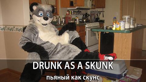 5Drunk_as _a_ Skunk