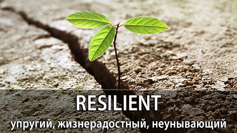 5Resilient