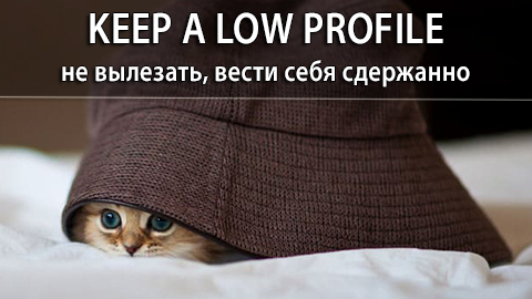 6Keep_a_Low_Profile