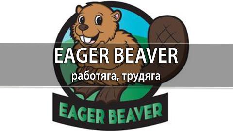 7Eager_Beaver