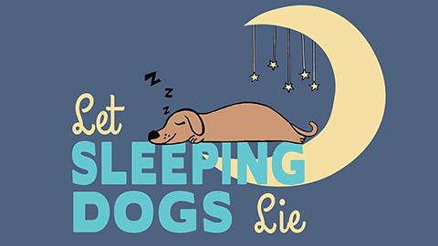 7Sleeping_Dogs