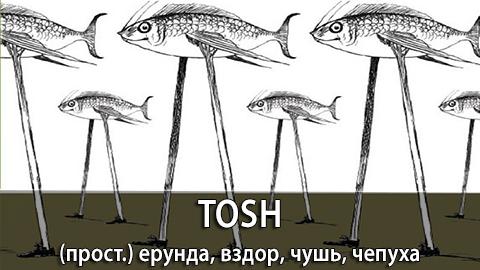 7Tosh