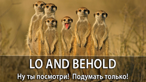 8Lo_and_behold