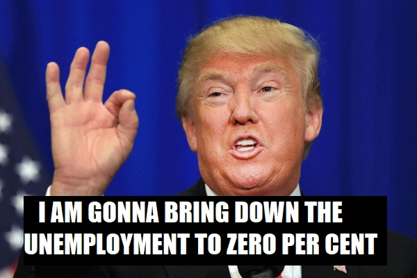 bring down the unemployment rate
