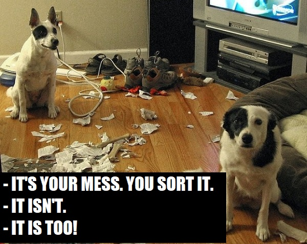 dogs-caught-in-the-act-3