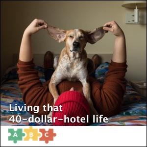 puzzle_40-dollar-hotel