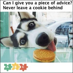 puzzle_a_piece_of_advice