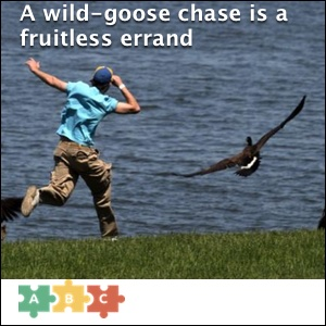 puzzle_a_wild_goose_chase