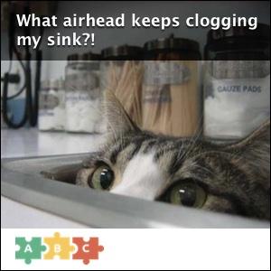 puzzle_airhead