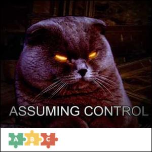 puzzle_assuming_control