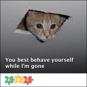 puzzle_behave