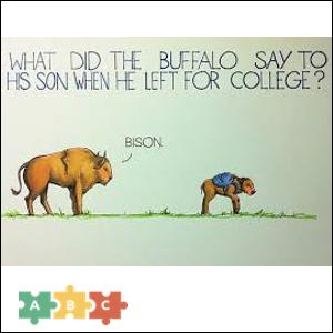 puzzle_bison