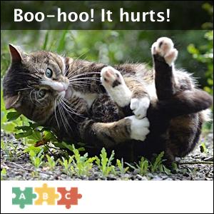 puzzle_boo_hoo_it_hurts