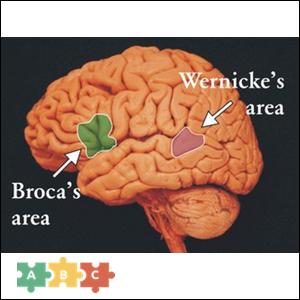 puzzle_broka