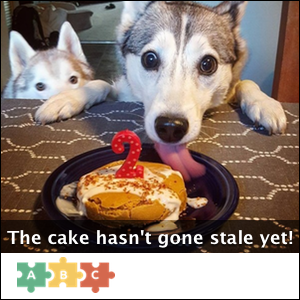 puzzle_cake_hasnt_gone_stale