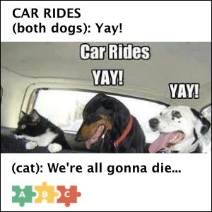 puzzle_car_rides_yay