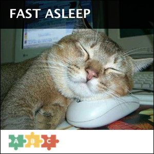 puzzle_cat_fast_asleep