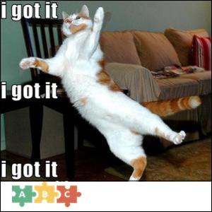 puzzle_cat_got_it