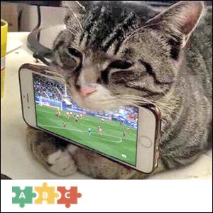 puzzle_cat_phone