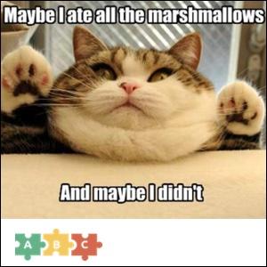 puzzle_cat_thief