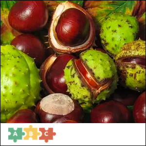 puzzle_chestnuts