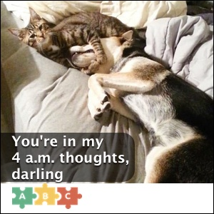 puzzle_darling
