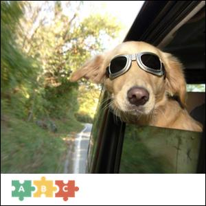 puzzle_dog_ride