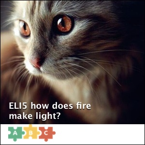 puzzle_eli5_cat