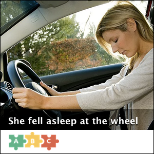 puzzle_fell_asleep_at_the_wheel