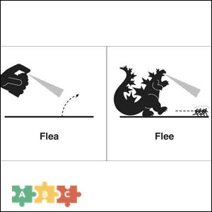 puzzle_flea_flee