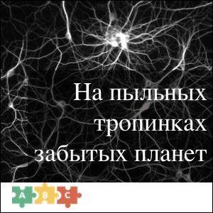 puzzle_forgotten