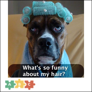 puzzle_funny_hair