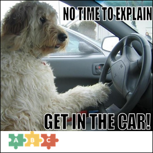 puzzle_get_in_the_car
