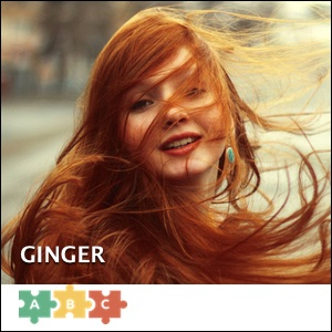 puzzle_ginger