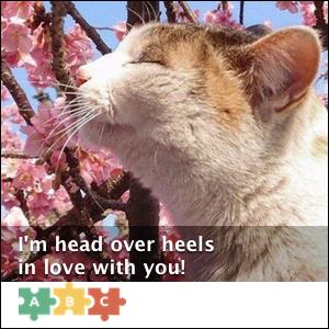 puzzle_head_over_heels