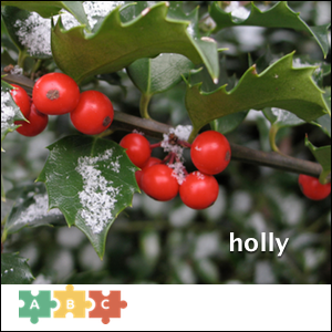 puzzle_holly