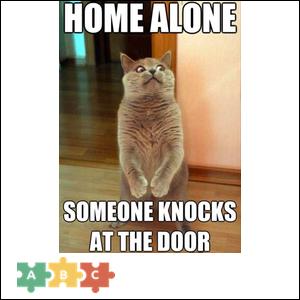 puzzle_home_alone
