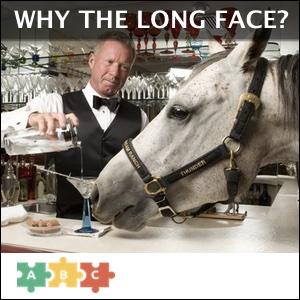 puzzle_horse_at_bar