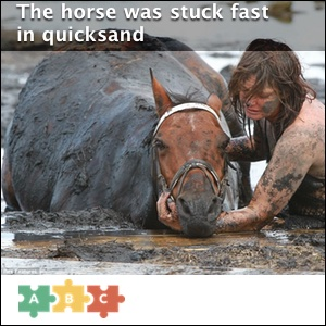 puzzle_horse_stuck_fast
