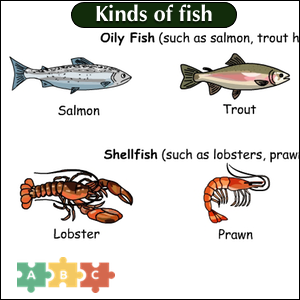 puzzle_img_kinds_of_fish